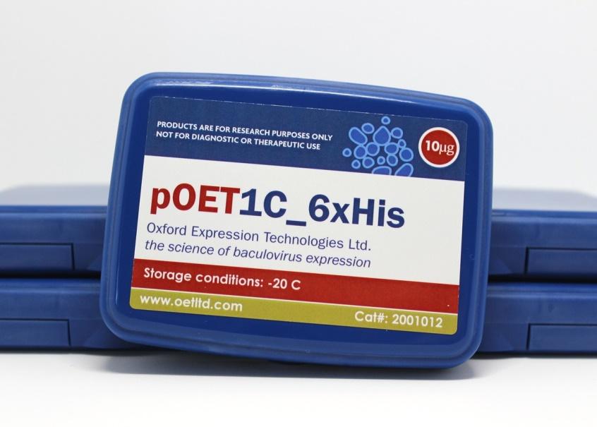 pOET1C 6xHis Box