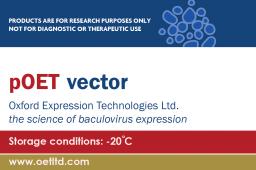 Baculovirus Transfer Vectors