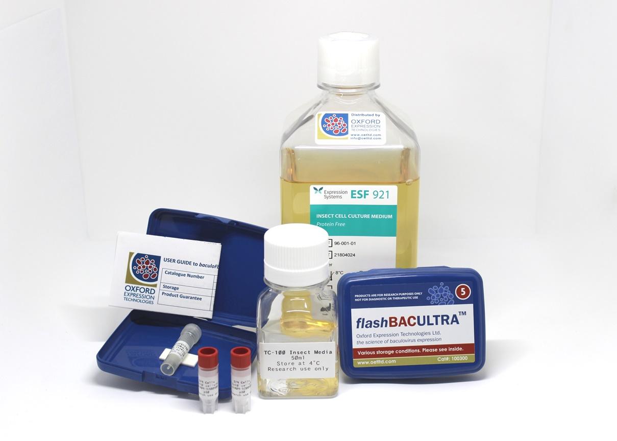baculoCOMPLETE Baculovirus Expression Kit