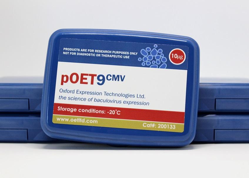 pOET9 CMV Box