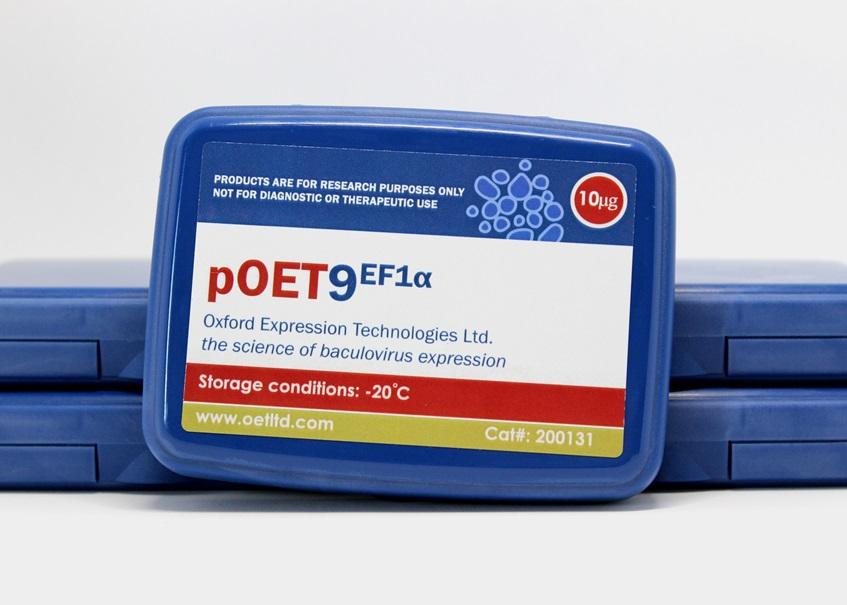 pOET9 EF1A Box