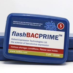 flashBAC PRIME