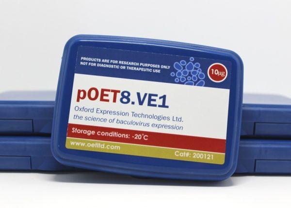 pOET8.VE1 Transfer Plasmid