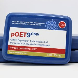 pOET9 CMV Transfer Plasmid