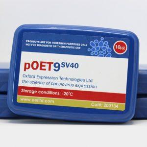 pOET9 SV40 Transfer Plasmid
